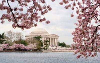 Washington Redskins - Jefferson Memorial