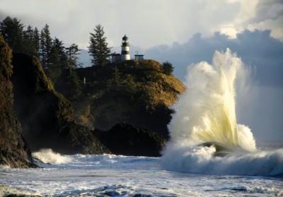 Seattle Seahawks - Long-Beach-Peninsula-WA