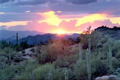 Arizona Cardinals - Desert Sunset