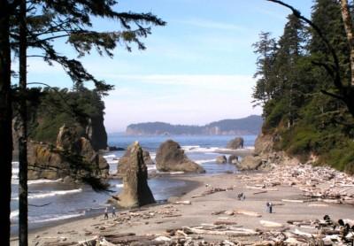 Seattle Seahawks - Ruby_Beach_Olympic_Pen